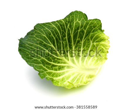 Savoy Cabbage Leaf Texture Isolated on White Background - stock photo