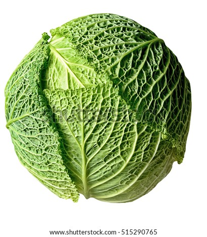Savoy cabbage, super food, close up. Whole cabbage head on white background.