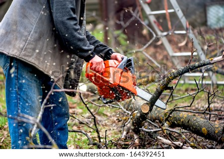 Sawdust flies as a man cuts a fallen tree into logs. A chainsaw in action, a lumberjack with protective gear - stock photo