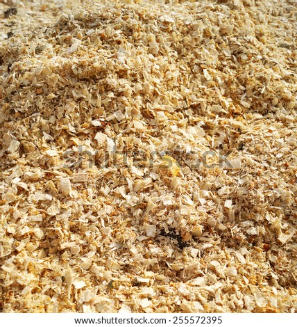Sawdust from the sawmill - stock photo