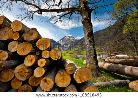 Sawed Firewood Dropped High Up in the Swiss Alps - stock photo