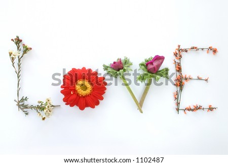 Say it with flowers: Love - Say it with flowers. . - stock photo