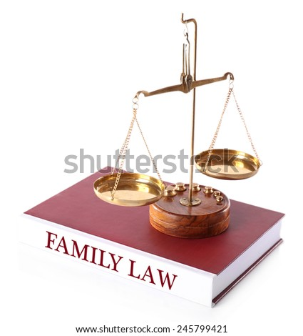 Scale on FAMILY LAW book isolated on white - stock photo