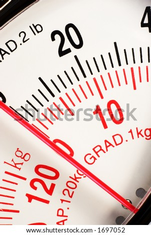 Scales macro - stock photo