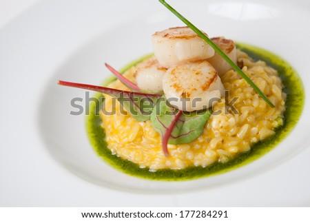 Scallop risotto - stock photo