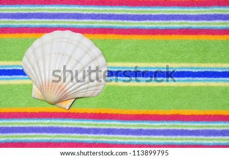 Scallop Shell on a pretty striped beach towel, room for your text - stock photo