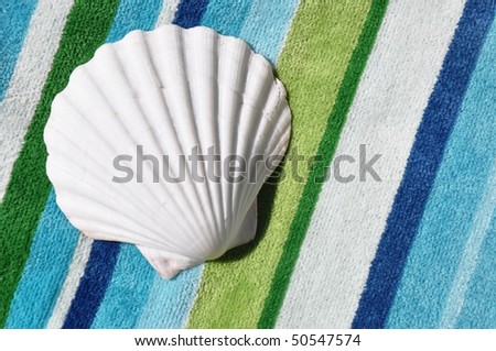 Scallop shell on striped beach towel room for your text - stock photo