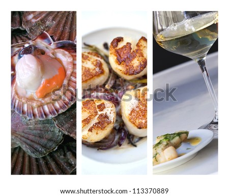 Scallops collage