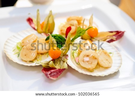 Scallops on banquet table, close-up - stock photo