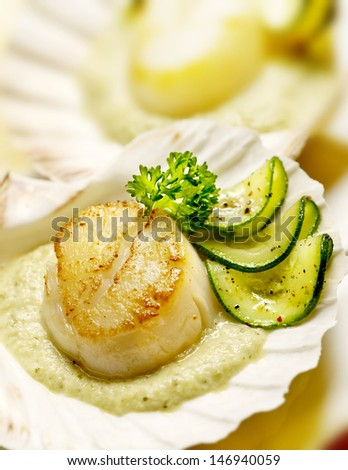 scallops served in a scallop shell with zucchini and parsley - stock photo