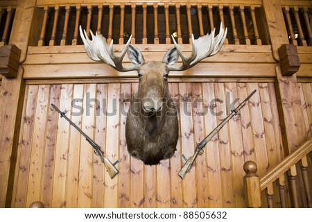 Scandinavian wooden cabin wall with moose head and two guns - stock photo