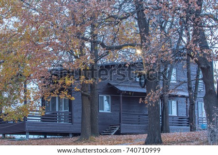 Scandinavian wooden cottage in oak forest. Autumn season with yellow leaves and first snow. Yellow foliage and snow on the ground.