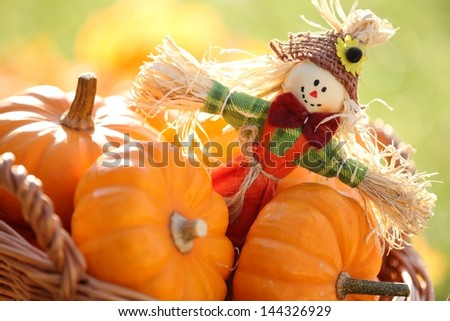 Scarecrow and pumpkins on colorful autumn background - stock photo