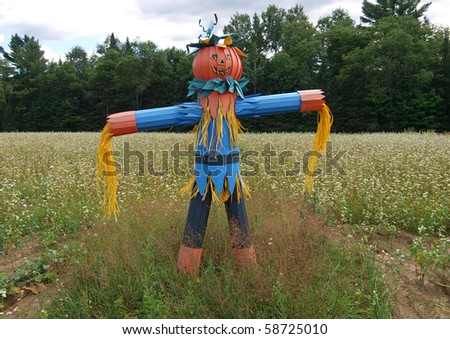 Scarecrow in field - stock photo