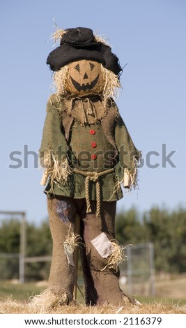 Scarecrow on farm - stock photo