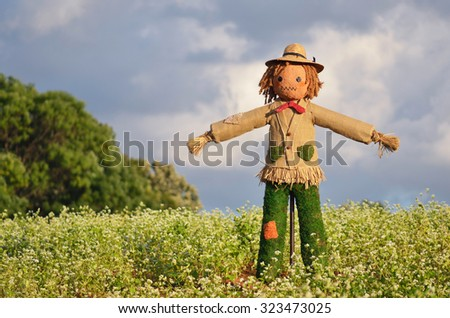 Scarecrow strawman made to guard the fields