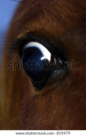 scared look - stock photo