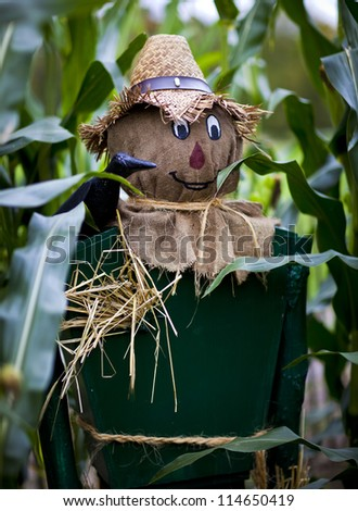 Scaregrow standing in a field of fresh corn - stock photo
