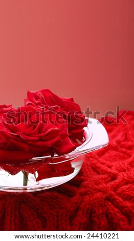 Scarlet roses in and glass flat vase on the woolen knitted serviette, there is an enough empty background