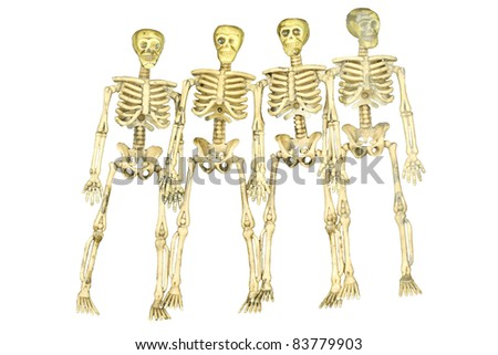 Scary group of Skeletons isolated on white, waiting to be used for Halloween or Cinco de Mayo - stock photo