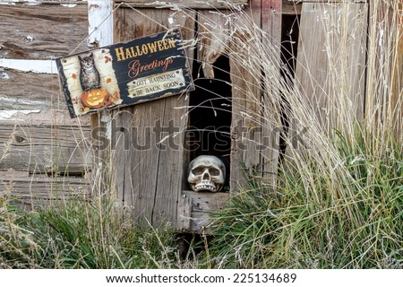 Scary Halloween skull in old abandoned wood building with Halloween greetings sign - stock photo