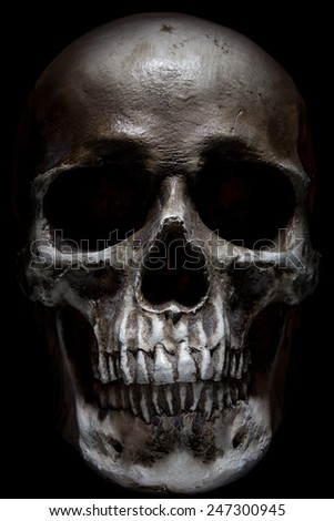 Scary human skull isolated on black background - stock photo
