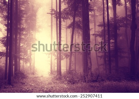 Scary light marsala color forest scene. - stock photo