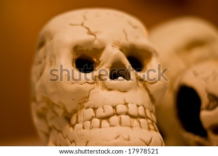 Scary skulls are ready for halloween - stock photo