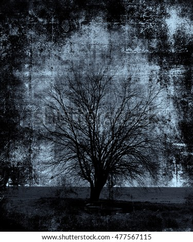 Scary Tree, Halloween wallpaper. Scratched texture background with frame