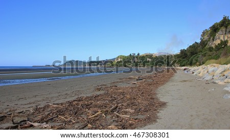 Scene after heavy rainfall. Driftwood at Pohara Beach. New Zealand.
