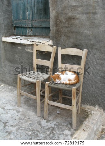 Scene in small greek city - two chairs and one cat in the background of grey wall - stock photo