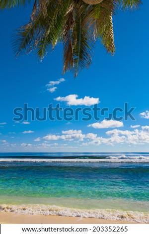 Scene Overhanging Beach  - stock photo