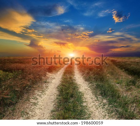 Scene with dirt road among steppe on sunset background - stock photo