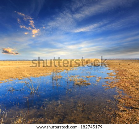 Scene with flooded meadow in spring time - stock photo