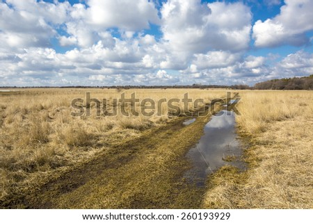 Scene with rut road in steppe at a nice spring day - stock photo