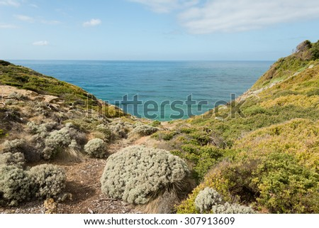 Scenery along the Great Ocean Road in  Victoria, Australia.  - stock photo