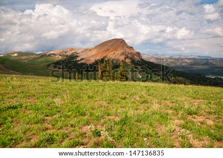 Scenery from the Clay Butte Lookout Tower in Wyoming. - stock photo