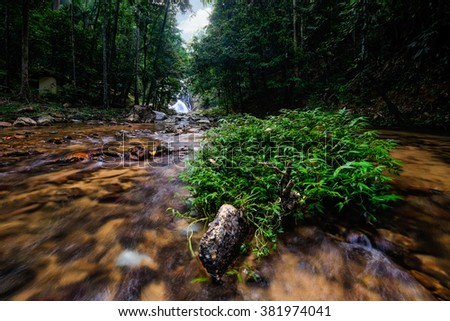 """Scenery of a waterfall known as """"Lata Meraung"""" (Screaming Rapid) located in Jerantut, Pahang, Malaysia. Soft focus and some motion blue due to long exposure. Focus in the center. - stock photo"""