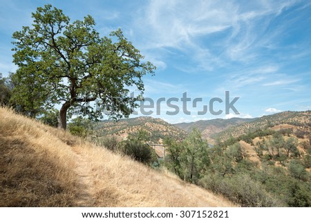 Scenery of Northern California Landscape. - stock photo