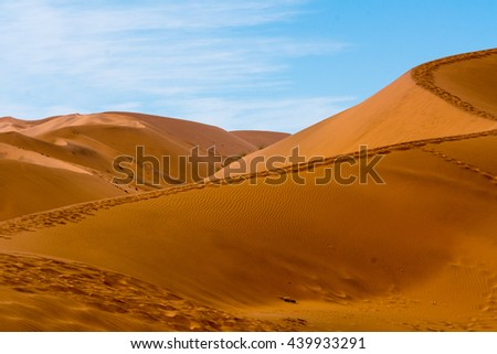 Scenery of the dunes of sossusflei, located in the namib desert. Here you find the highest sand dunes of the world.