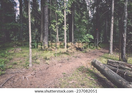scenic and beautiful tourism trail in the woods near river. latvia. - retro, vintage style look - stock photo