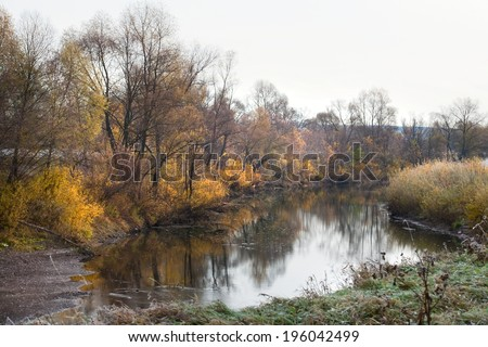 Scenic autumn landscape  oak grove with yellowed leaves near the river, frost on the grass on a cold morning