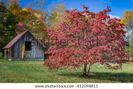 Scenic barn with red tree in autumn - stock photo