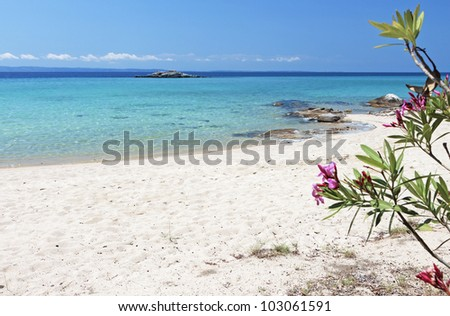 Scenic beach of Kalogria at Sithonia of the Halkidiki peninsula in Greece - stock photo