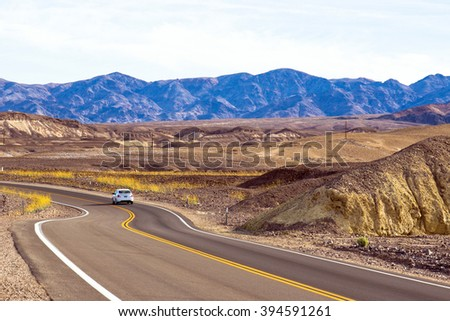 Scenic drive with wildflowers in Death Valley National Park - stock photo
