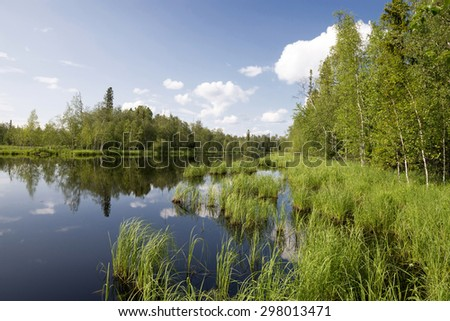 scenic forest lake, wild landscape - stock photo