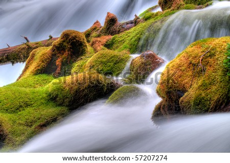 Scenic images of a moss covered streambed in the rocky mountains - stock photo