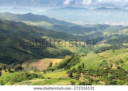 Scenic Landscape at Phu Chi Fa, North Thailand - stock photo