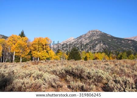 Scenic landscape in Grand Tetons national park - stock photo