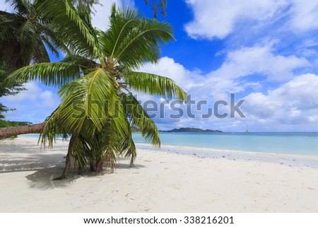 Scenic landscape of tranquility and paradise with a single coconut tree - stock photo